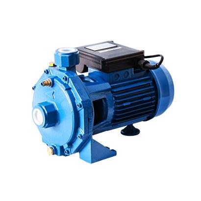ปั๊มน้ำ VENZ รุ่น VB100 0.75kW 1HP 2Pole 220V